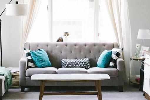 客厅, 沙发, 室内设计, 装修, 枕头, 窗口, 幕, 表, 家具, 惬意